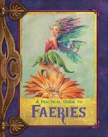 A Practical Guide to Faeries 0786951400 Book Cover
