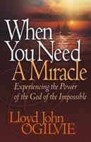 When You Need a Miracle 0736914250 Book Cover