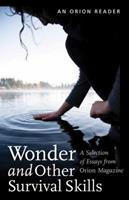 Wonder and Other Survival Skills 1935713027 Book Cover