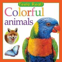 Colorful Animals (Feels Real Series) 0764160257 Book Cover