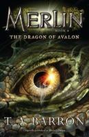 Merlin's Dragon 0399247505 Book Cover