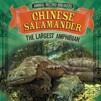 Chinese Salamander: The Largest Amphibian 1725308665 Book Cover