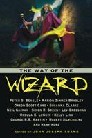 The Way of the Wizard 1607012324 Book Cover