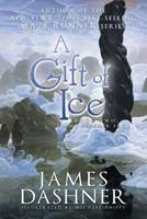 A Gift Of Ice 1555177530 Book Cover
