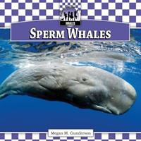 Sperm Whales 1616134518 Book Cover