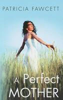 A Perfect Mother 184782479X Book Cover
