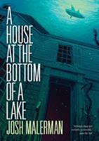 A House at the Bottom of a Lake 1910471011 Book Cover