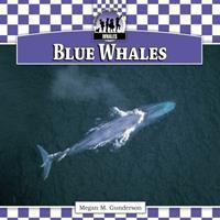 Blue Whales 161613447X Book Cover