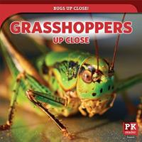 Grasshoppers Up Close 1725307901 Book Cover