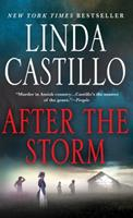 After the Storm 1250078326 Book Cover