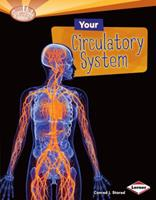 Your Circulatory System 0761374477 Book Cover