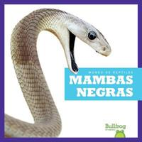 Mambas Negras / Black Mambas 1620318105 Book Cover