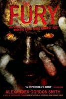 The Fury 0374324956 Book Cover