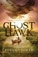 Ghost Hawk 1442481412 Book Cover