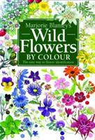 Wild Flowers by Colour: The Easy Way to Flower Identification 075130493X Book Cover