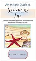 Instant Guide to Seashore Life (Instant Guides) 0517691116 Book Cover