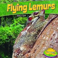 Flying Lemurs 1448861845 Book Cover